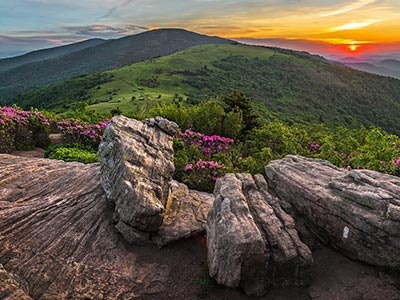 Indian dating in Hendersonville